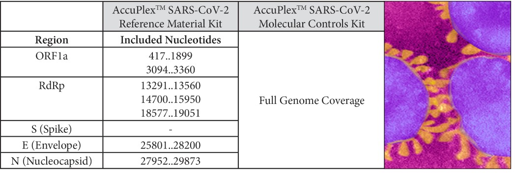 SARS-CoV-2 Region Table