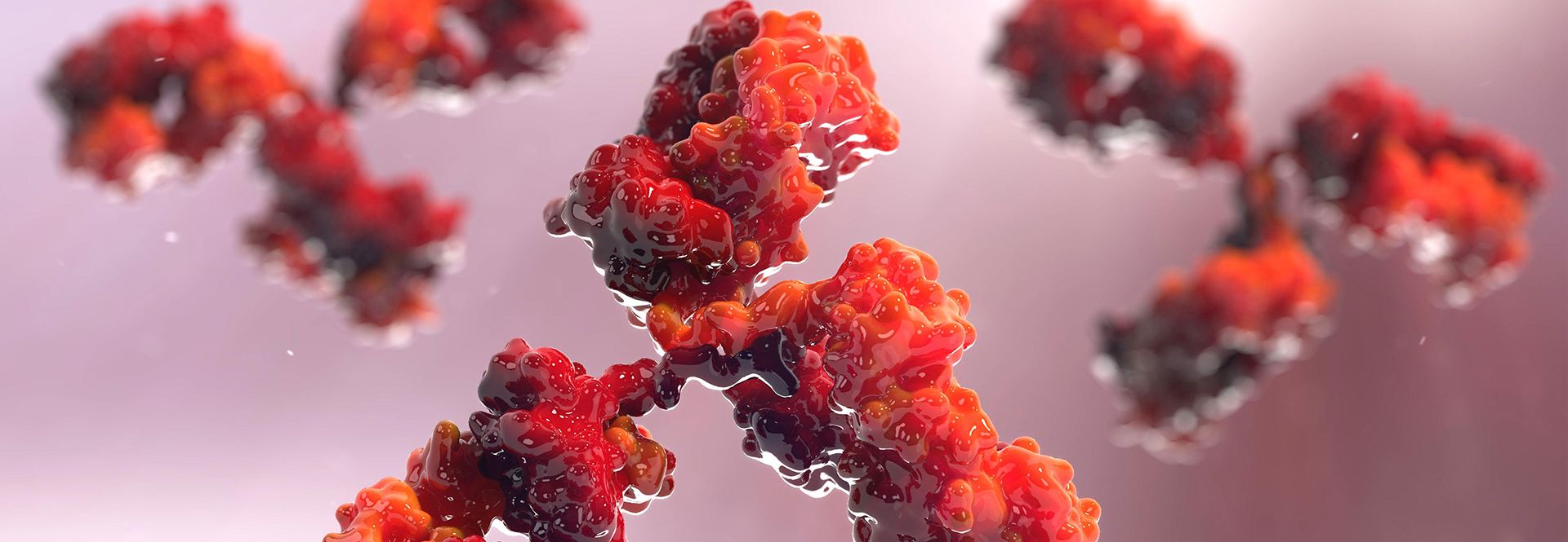 Antibodies-Reagents-Header.jpg