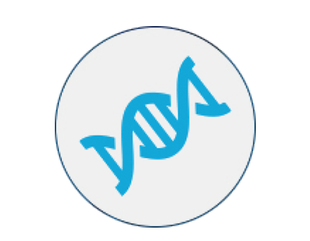 Seracare quality control tools for clinical laboratories assay widest selection of high performance multiplexed clinical genomics reference standards for tumor profiling nipt cell free dna and germline sequencing fandeluxe Choice Image